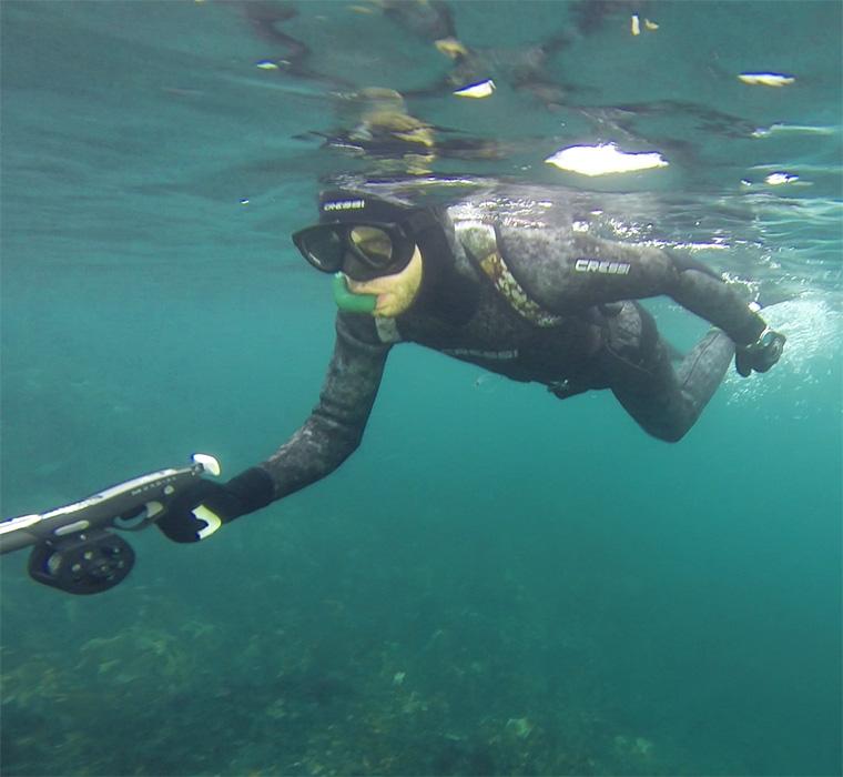 Find dit næste dykkerkursus hos elemento - undervandsjagt og jagt på havørred