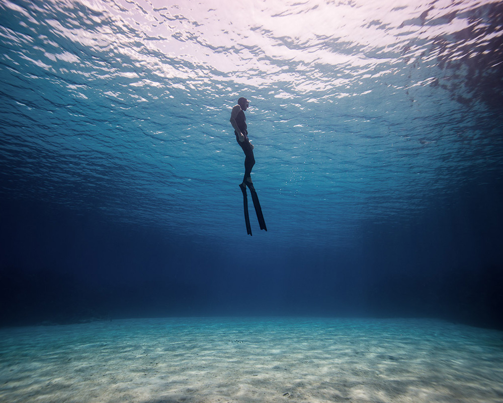elemento kursus i undervandsjagt - finner