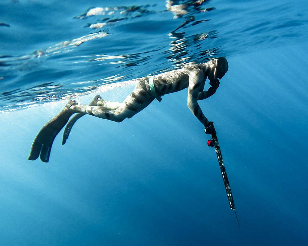 elemento kursus i undervandsjagt - harpun